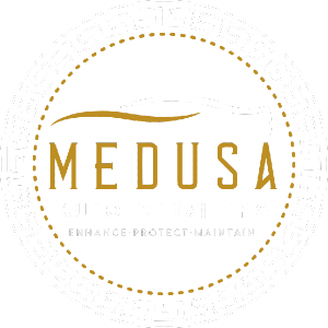 Medusa Auto Detailing